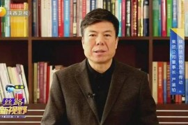 法士特集团董事长严鉴铂连线《丝路新视野》专访